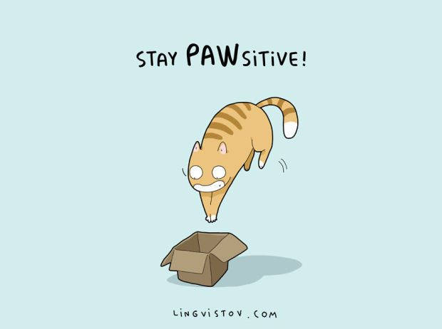 Cat Puns That Will Put A Smile On Your Face Cat And Animal - Amusing illustrations will put smile face