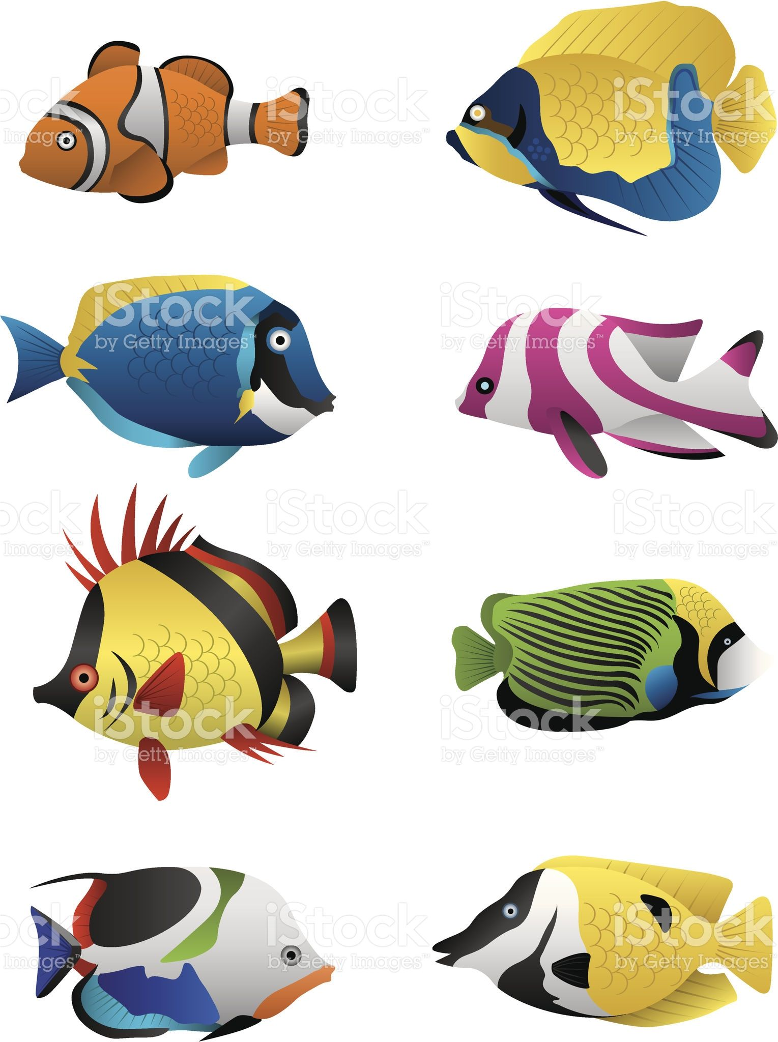 A colorful assortment of tropical fish illustrated in for Poisson exotique en ligne