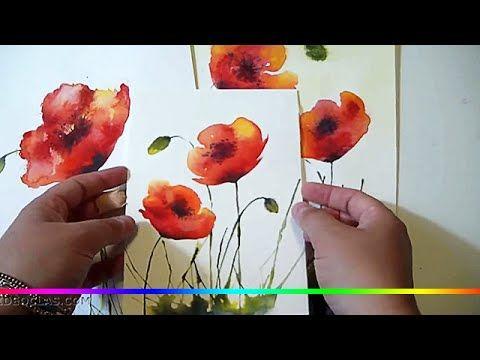 Akvarel Risuem Cvety Polevye Maki Prostoj Primer Dlya