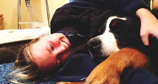 Image result for 2.You get sick less with dog
