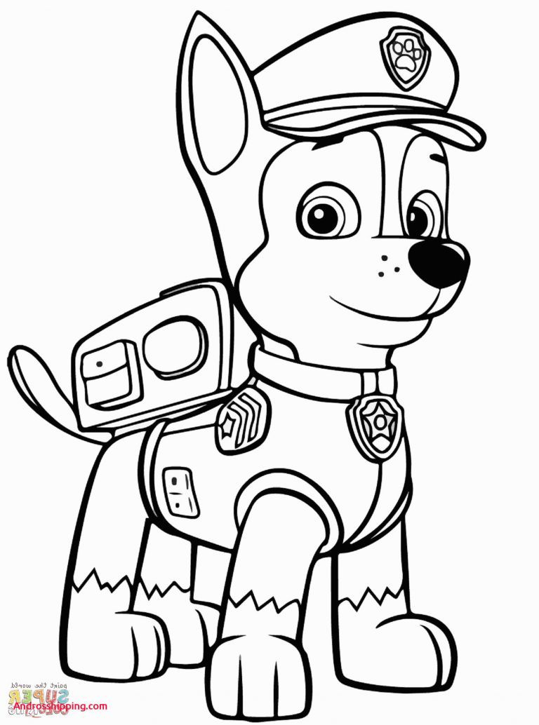 Paw Patrol Ausmalbilder Sky Genial 10 Awesome Coloring Pages Zuma From Paw Patrol Androsshipping Genial Bilde Ausmalbilder Paw Patrol Ausmalbilder Kinderfarben