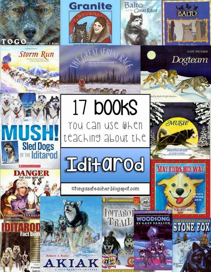 15+ Stone fox book reading level information
