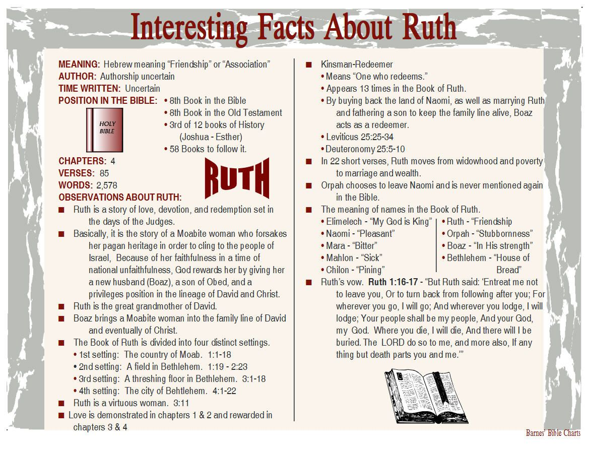 Interesting facts about ruth bible study scripture