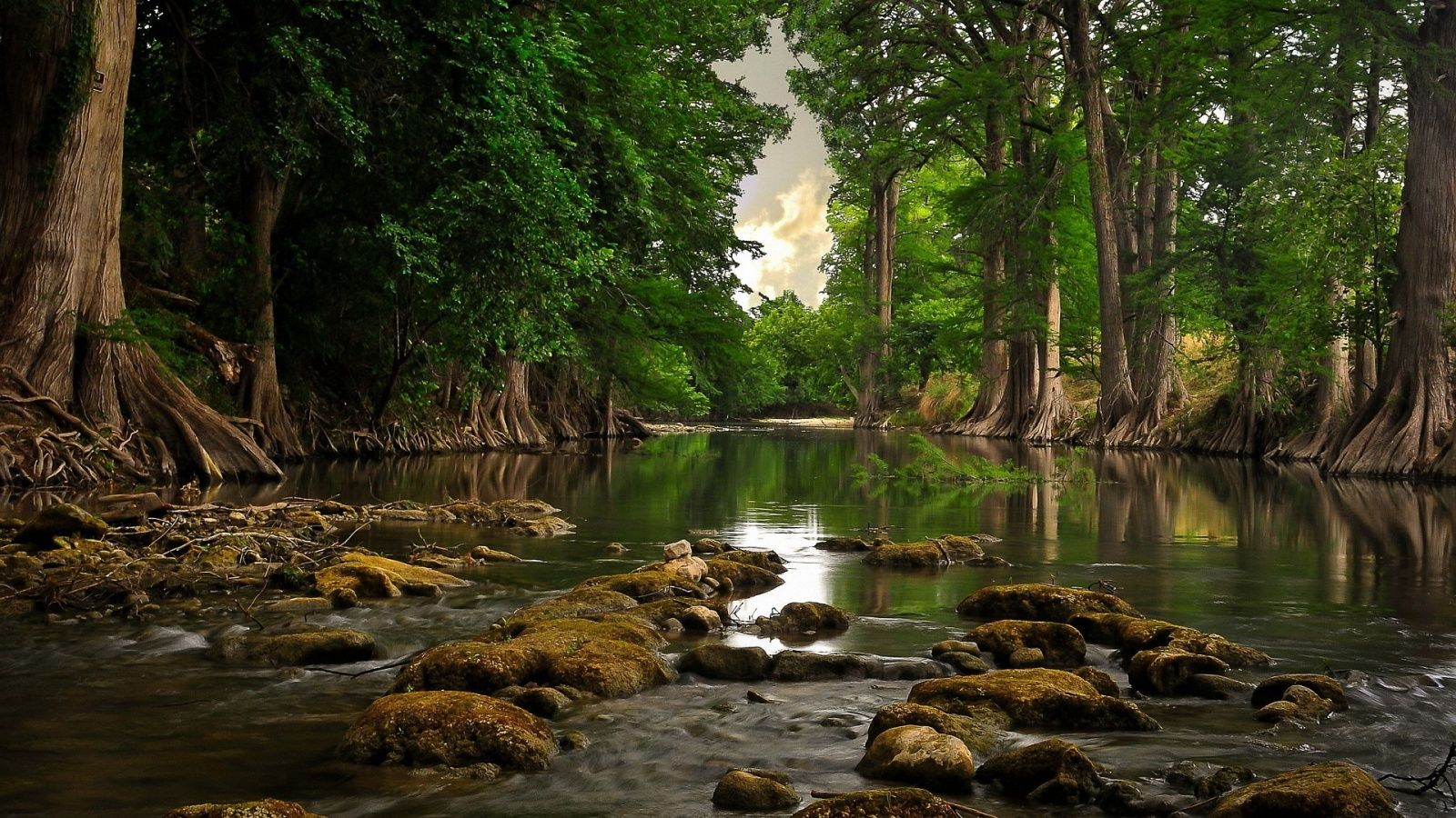 River 1600x900wallpaper Landscape Wallpaper Nature Wallpaper Background Images