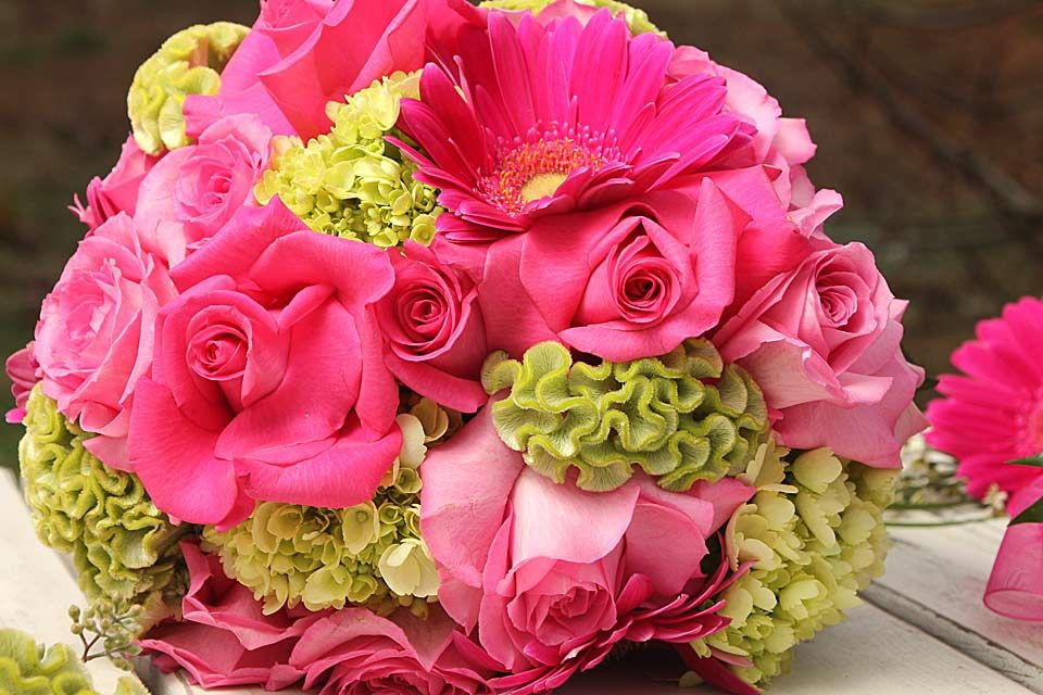 Google image result for httpbarteesflowerswp contentuploads bright color flowers bouquet for weddingsg hi res hd mightylinksfo Images