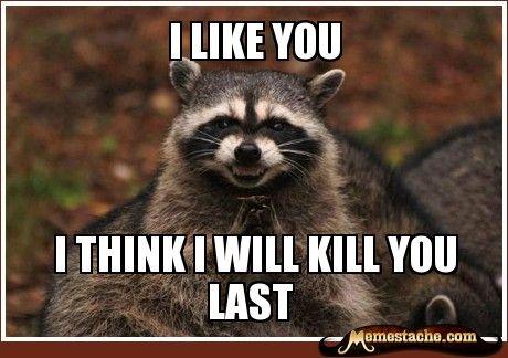 2a36d7f79888f5933dd0a7a0e613d3e5 evil plotting raccoon laugh a little pinterest raccoons
