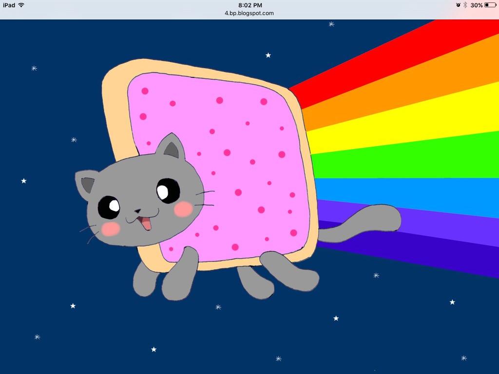 Pin By Lv Skylanders On Cats Nyan Cat Neon Cat Cat Wallpaper