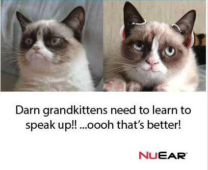 Making GrumpyCat happy! hearingaids Hearing sounds