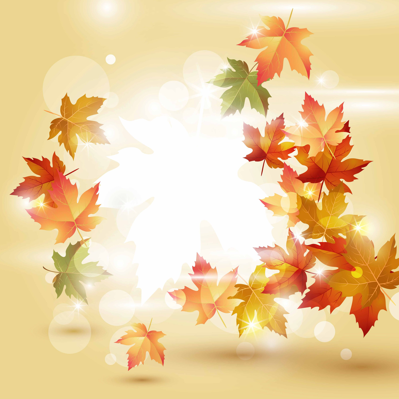 Fall Wallpaper Images Free: Stylish Fall Background