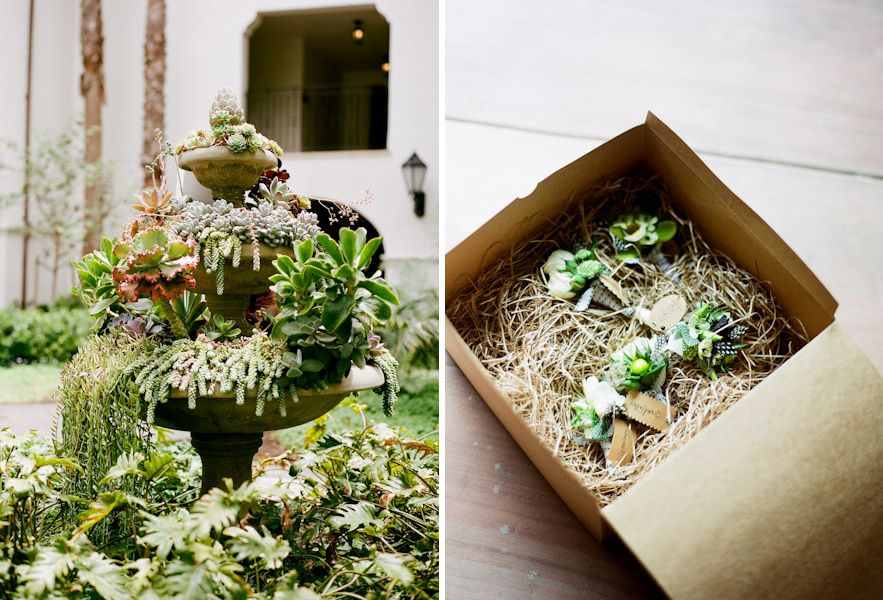 We love succulents! Photos: Tanya Lippert Photography. Florals: Adorations Botanical Artistry.