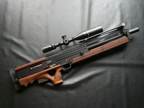 WA200 Sniper Rifle I believe