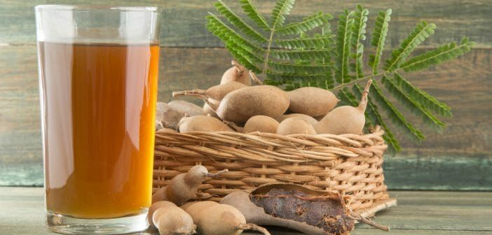 Boire du thé au tamarin fait-il maigrir ? | Tamarin