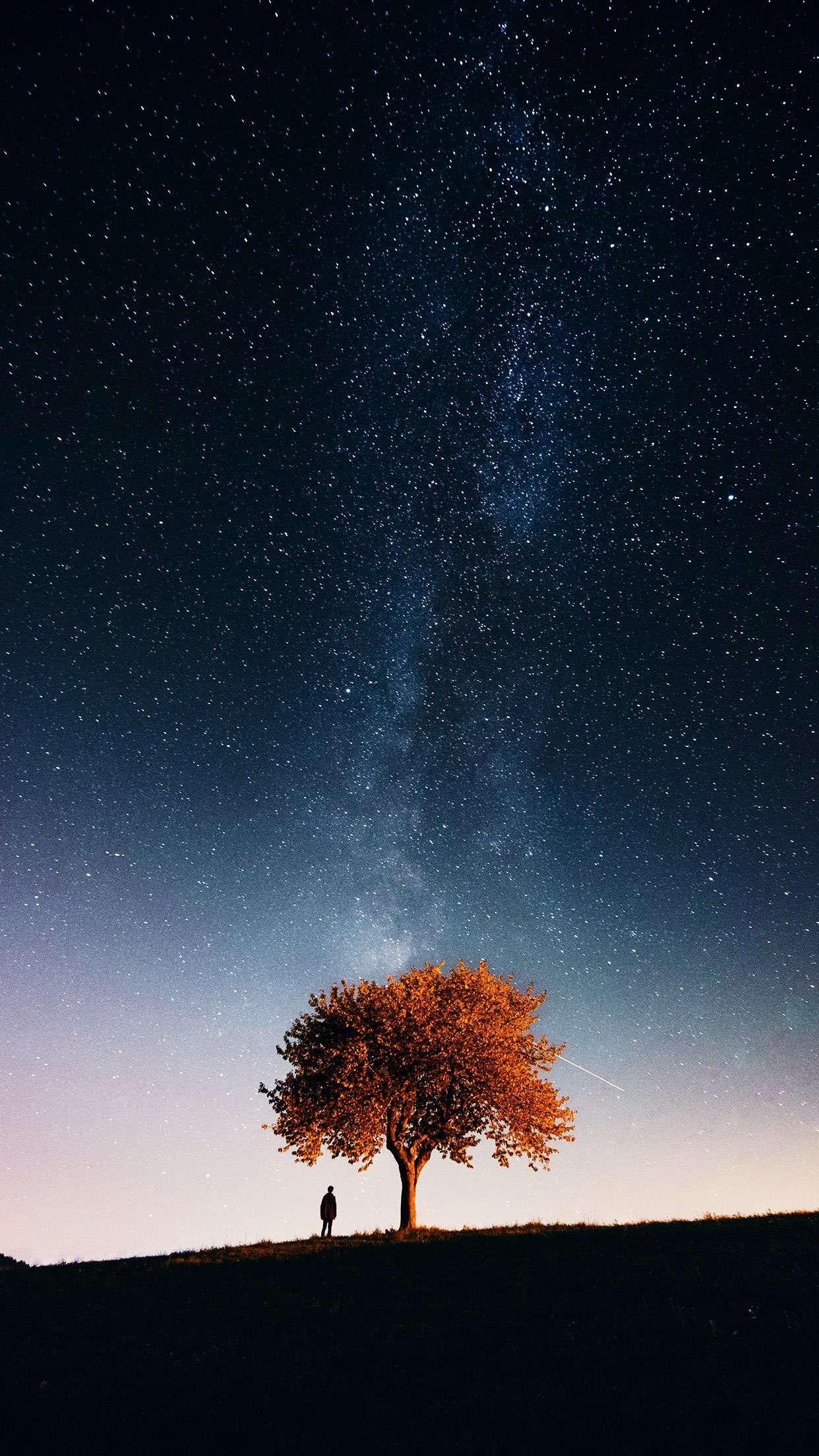 La Voie Lactée In 2019 Starry Night Sky Beautiful Sky