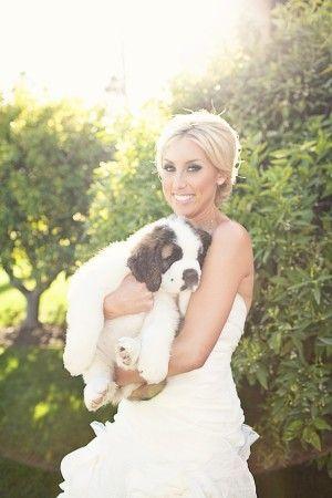 Bridal Portrait Ashley Rose Photography 2 | photography by http://ashleyrosephotography.com/
