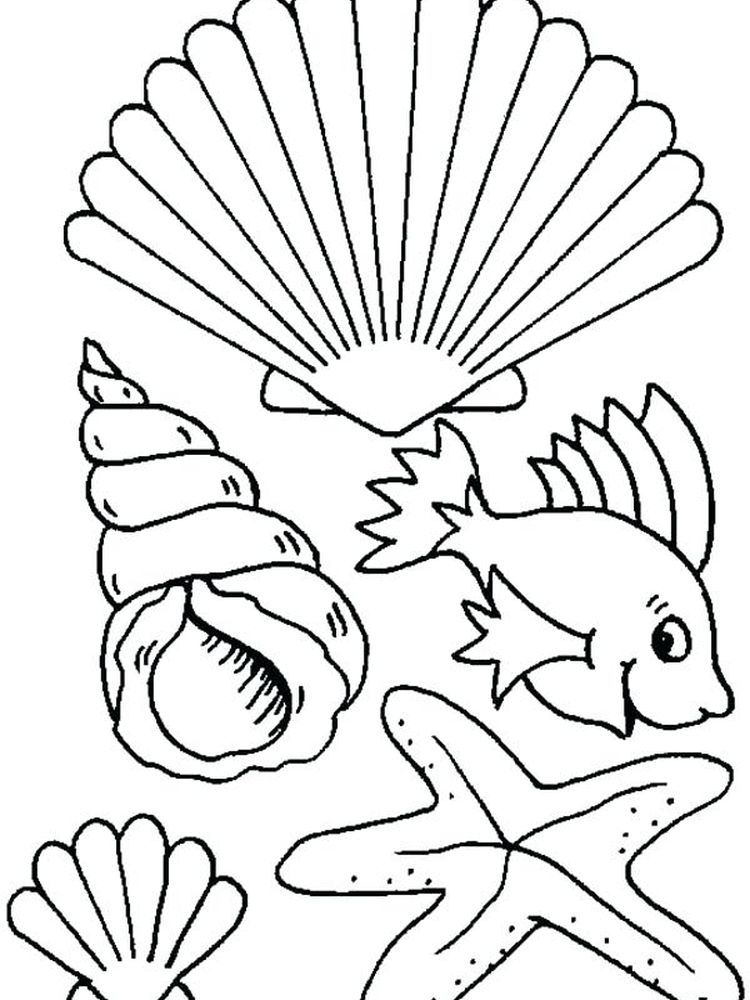 Sea Shell Coloring Page Shellfish Are Aquatic Animals Including Soft Bodied Animals Mollusks Al Malvorlagen Tiere Unter Dem Meer Basteln Tiere Zum Ausmalen