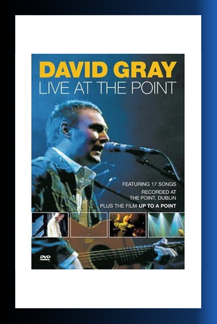 David Gray - Live at the Point
