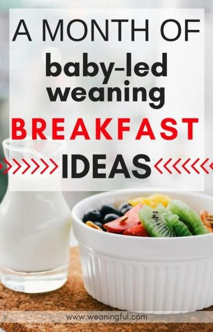 Super Baby Food Finger 9 Month Old 51+ Ideas #food #baby ...