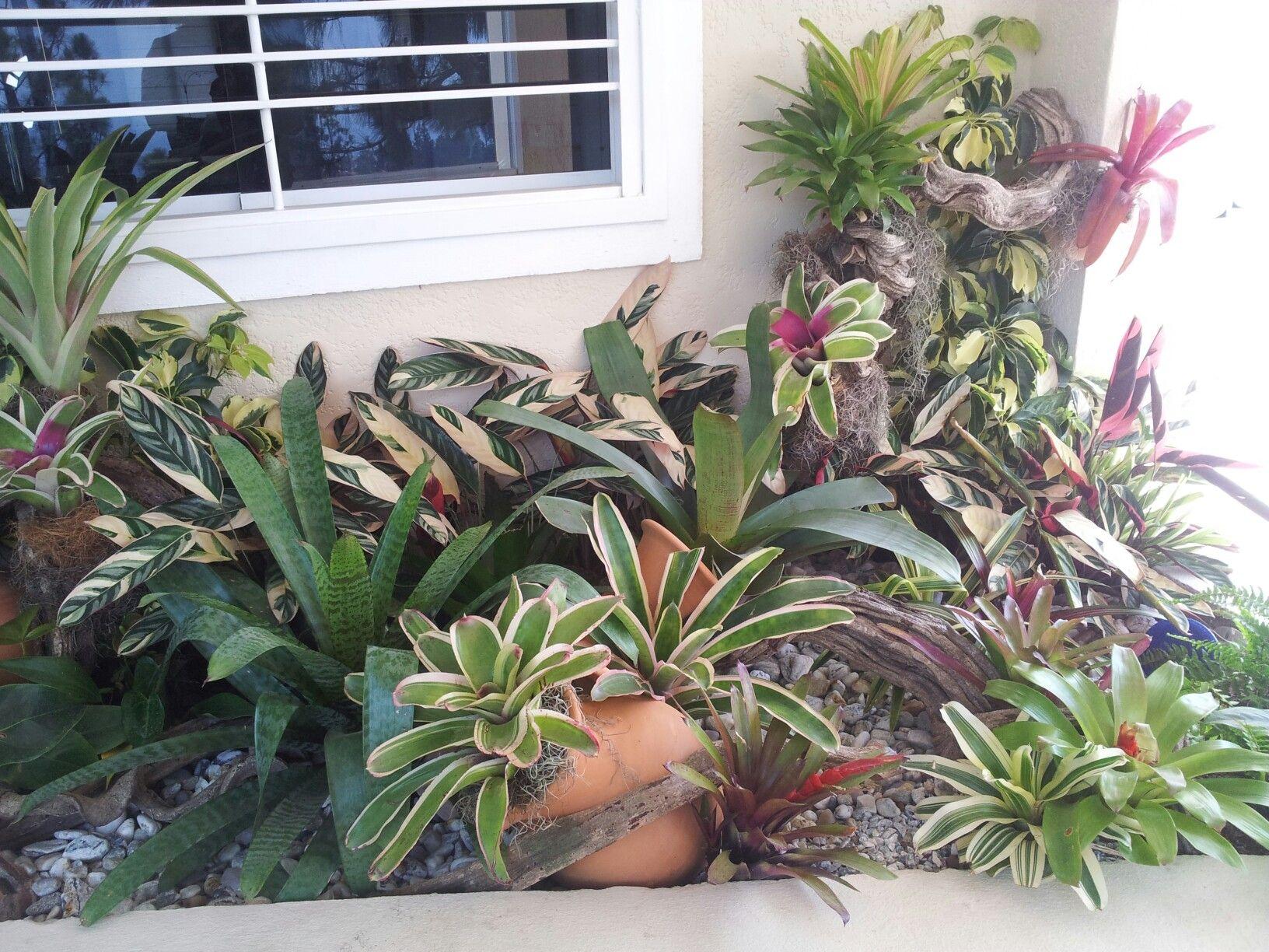 Jardin con - Piedras decorativas de jardin ...
