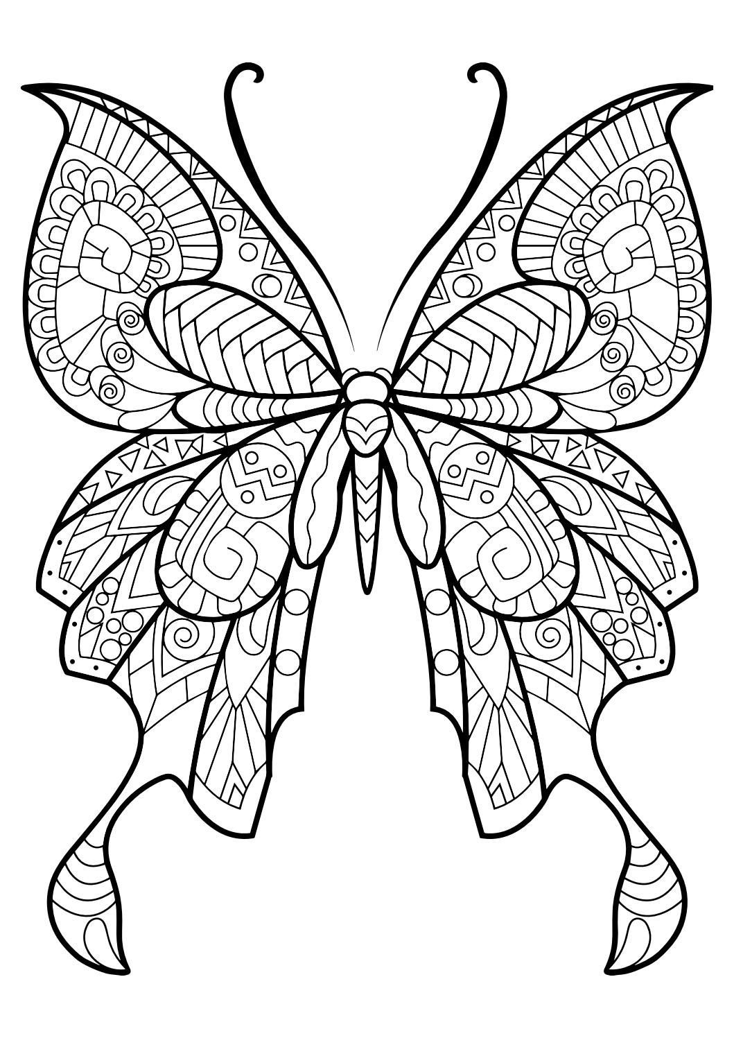 Adult Butterfly Coloring Book is part of Butterfly pictures to color - This adult coloring book with beautiful butterfly pictures to color is very easy to use  Multiple color palettes and a personal gallery of your own works, along with calming, relaxing background music, make this anti stress coloring book for adults a