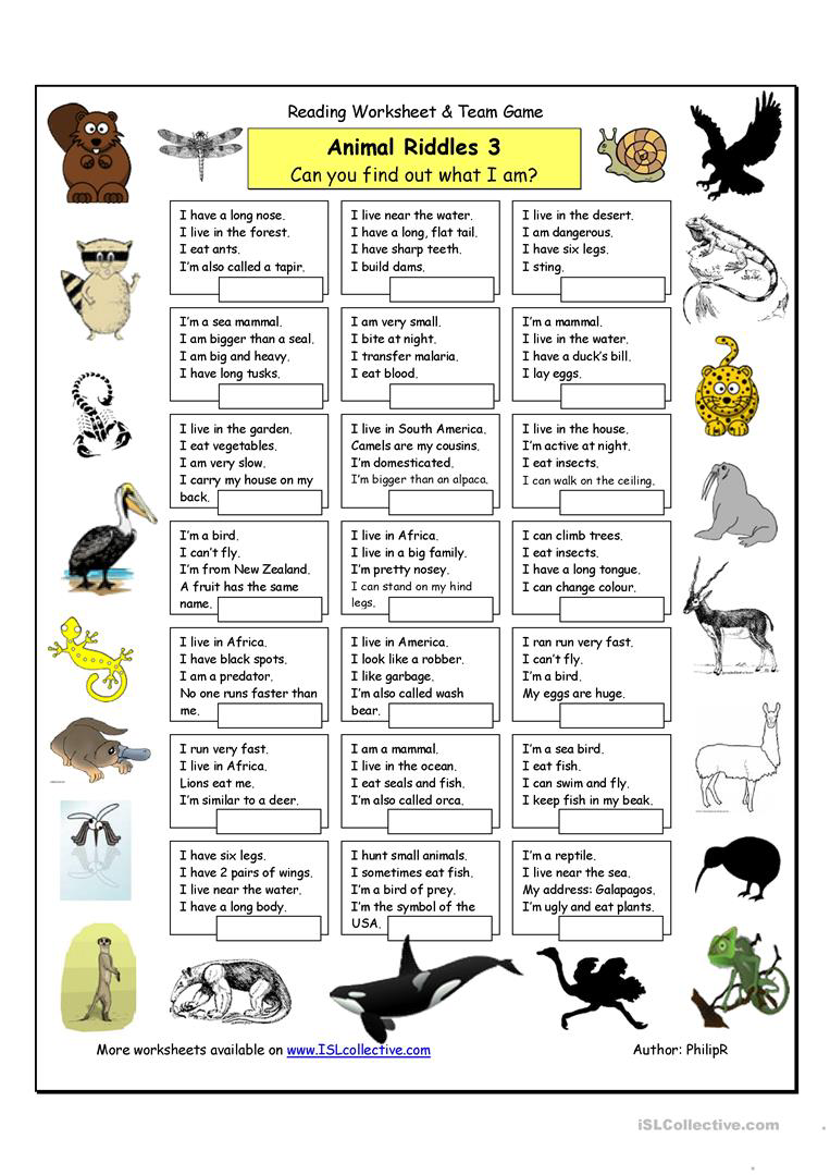 Animal Riddles 3 Hard English Esl Worksheets The Effective Pictures We Offer You About Scary Ri Nel 2020 Insegnanti Di Inglese Grammatica Inglese Poster Di Inglese