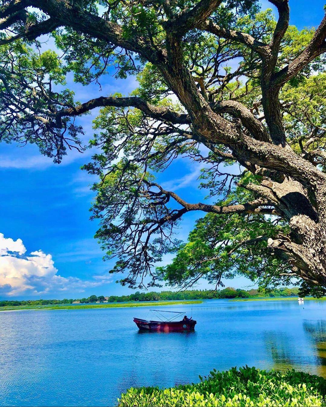 Nature Lake Water Greenery Nature Photography Photographyiphone Boat Float Green Blue Naturalbeauty 2020