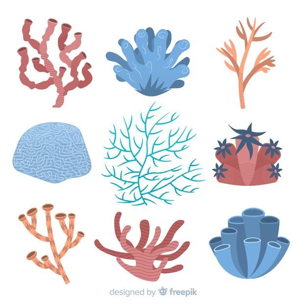 Download Flat Coral Collection for free | Vector free ...