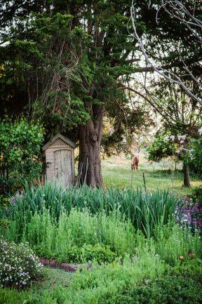 Family garden in Nundle, NSW image 5 Garden Pinterest Jardín
