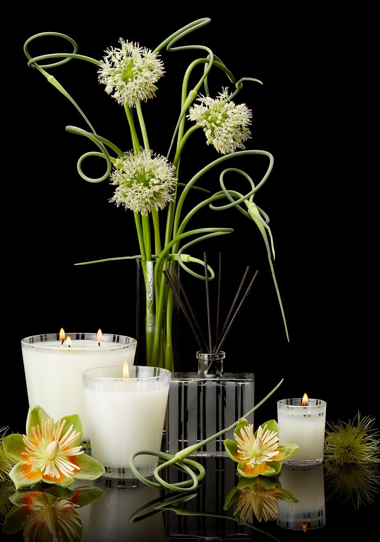 Lemongrass Ginger Home Fragrance Collection Nestfragrances Luxury Homefragrance Vibrant Fragrance Collection Home Fragrance Lemon Grass