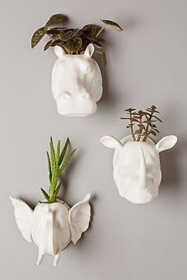 Wall Mounted House Plant Pots. Love The Plants Emerging From The Ceramic  Animal Heads.
