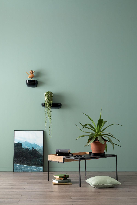 Designfarbe Erhabenes Agavengrun Nr 27 Schoner Wohnen Wandfarbe Schoner Wohnen Farbe Malerei Wandgestaltungen