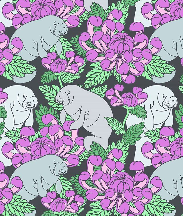 Working On A New Fabric Design Right Now For My Spoonflower Shop Manatees Chrysanthemums Manatee Manatees Spoonfl Animal Illustration Drawings Manatee
