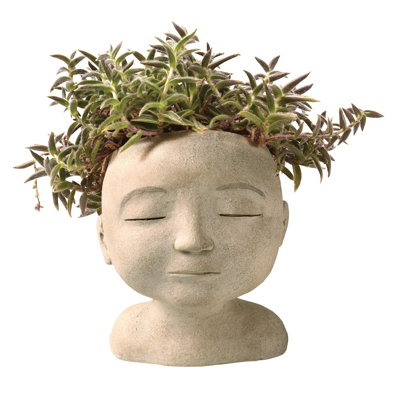 Trending: These Head Planters will add Personality