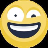 Zany Face On Facebook 2 1