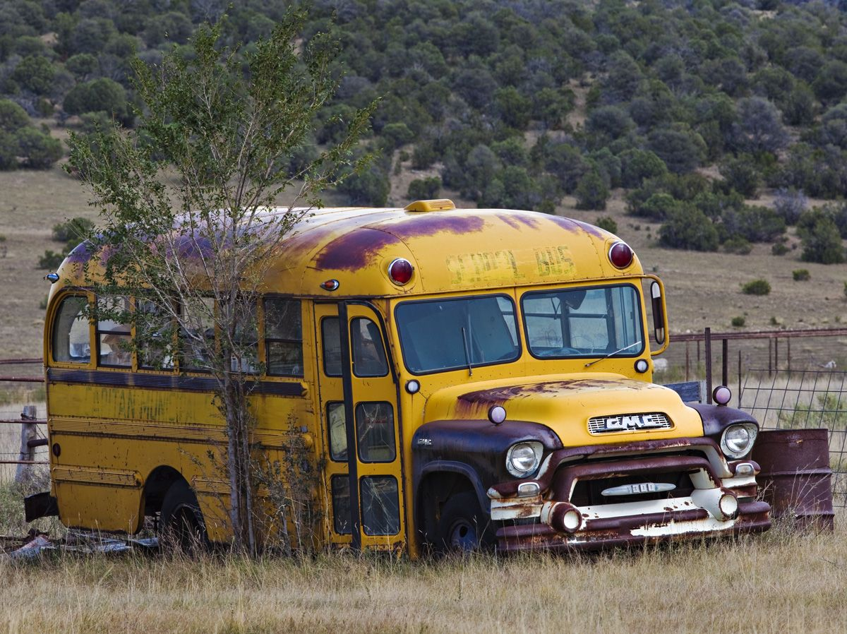 Just Waiting To Be Restored Old School Bus School Bus Bus