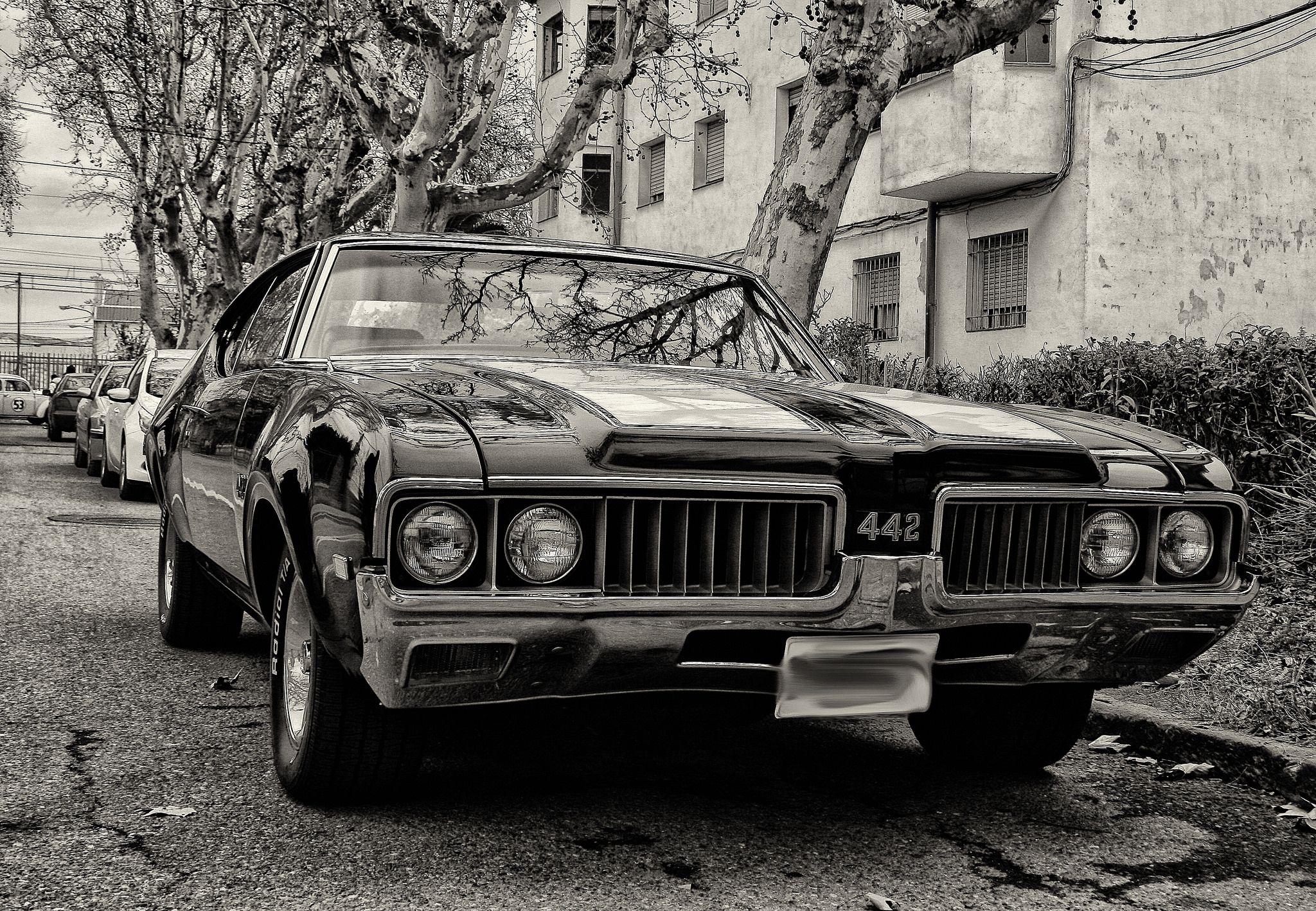 Oldsmobile 442 | by galileo1657