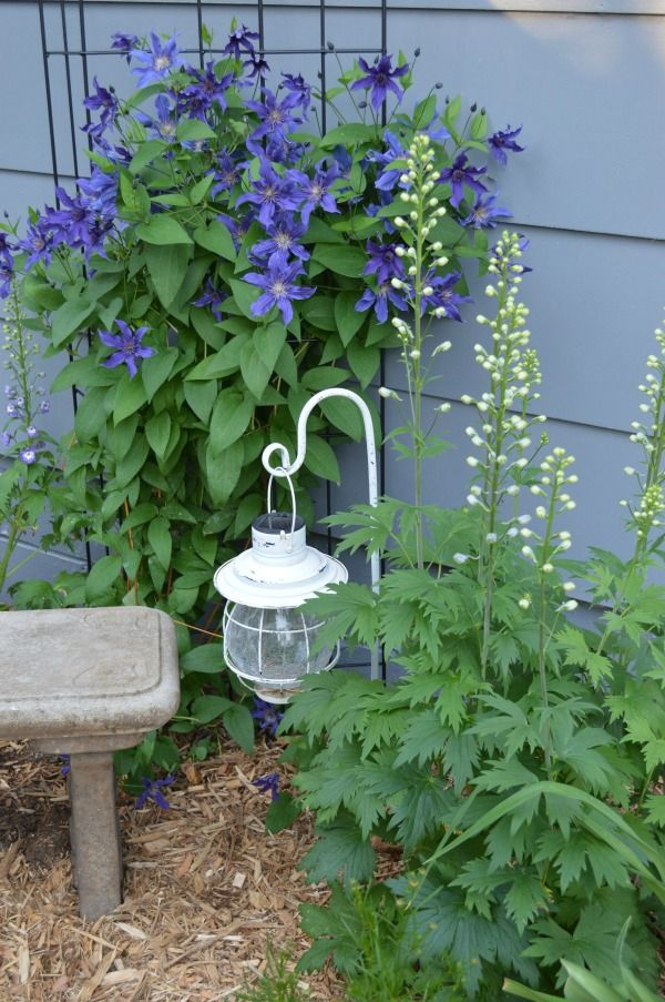 Photo of Creating Whimsy in Your Garden