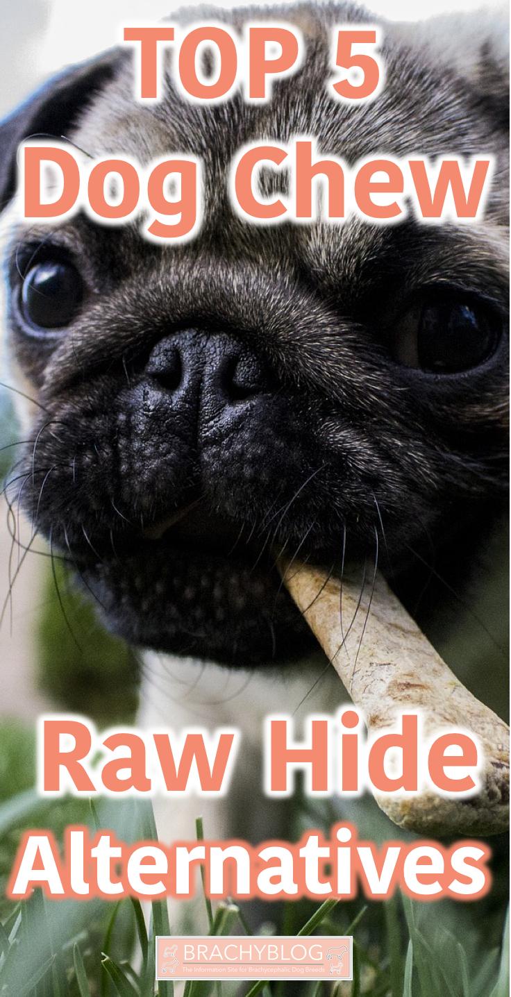 Best Dog Chew Comparison Alternatives to Raw Hide Dog