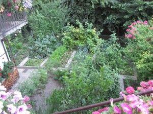 Kleiner Nutzgarten: Jeder Zentimeter wird hier genutzt/Schenna, Südtirol