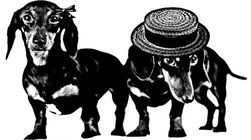"dachshund weiner dog illustration art Digital Image Download graphics clipart printables image size is 7.9"" x 14.2"" inches"