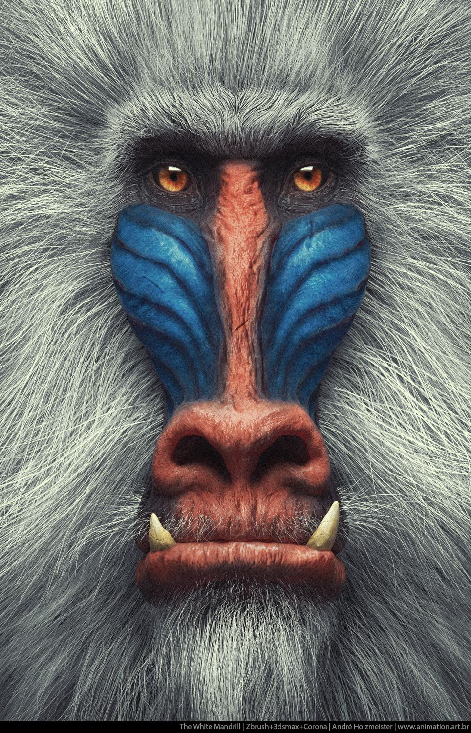 The White Mandrill by holzmeister