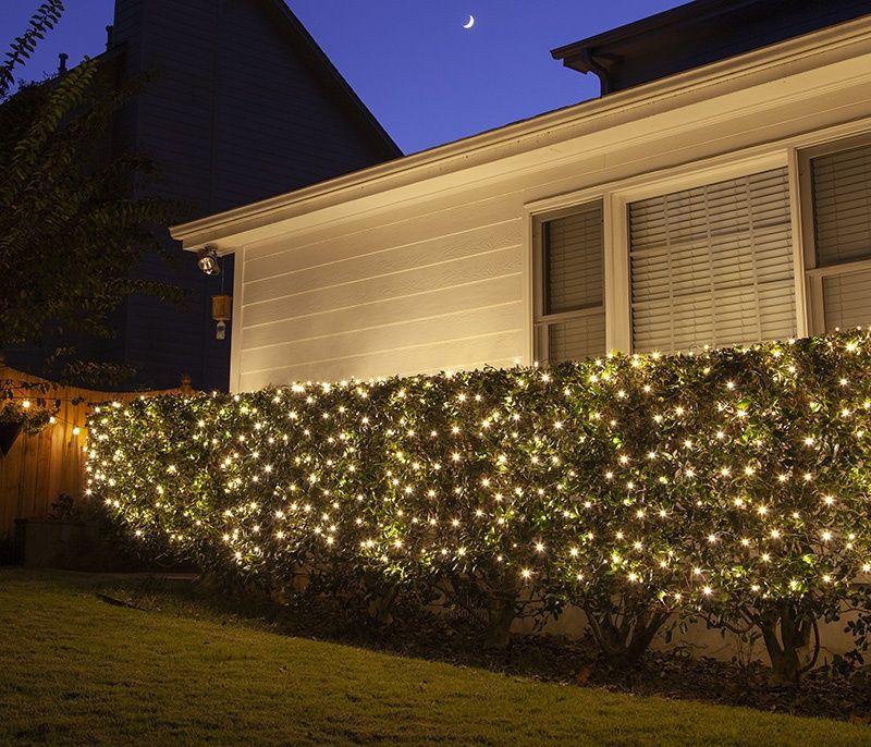 Net Lights Installation Guide Christmas Lights Etc Outdoor Christmas Lights Christmas Lights Diy Christmas Lights