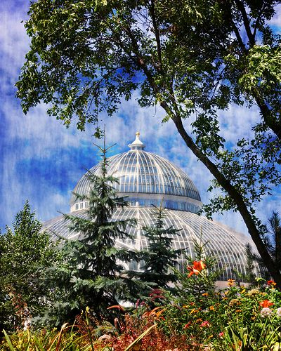 walk around Como Conservatory (inside and out) # ...