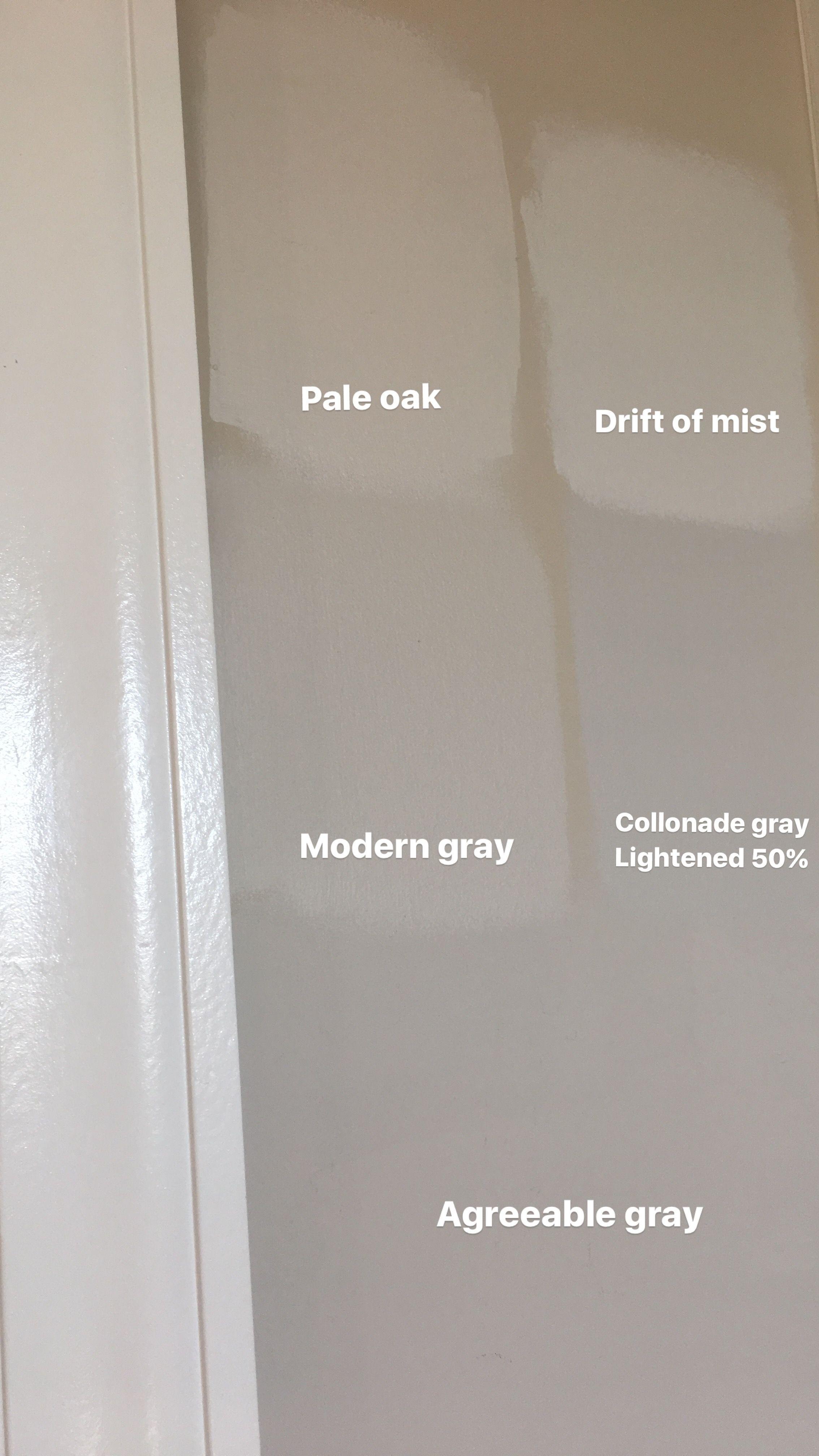 Pale Oak Modern Gray Drift Of Mist Colonnade Gray Agreeable