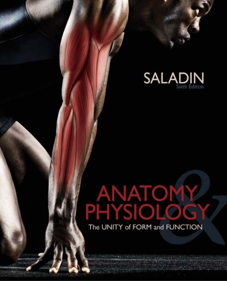 Saladin anatomy and physiology unity of form and function 6th c2012 ...