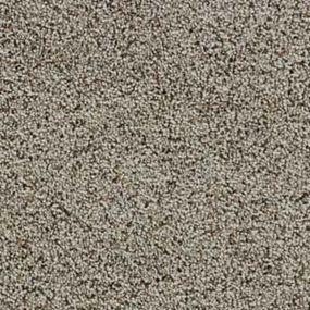 Legendary Beauty Barcelona - Carpet, Hardwood, Laminate, Tile, Ceramic, Area Rugs. Birmingham And Anniston's Floor Store. - Ted's Abbey Carpet & Floor