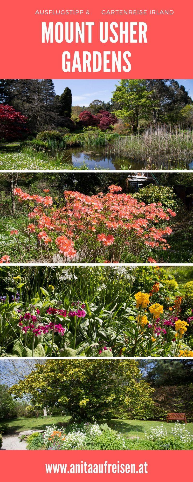 Mount Usher Gardens Irlands Wald Voller Wunder Teichlandschafts Stadtgarten Mediterraner Garten