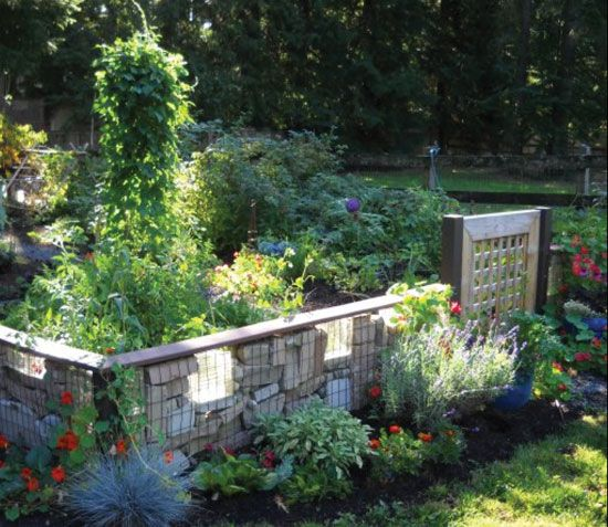 The Basics of Permaculture - Gardening Permaculture, Gardens and