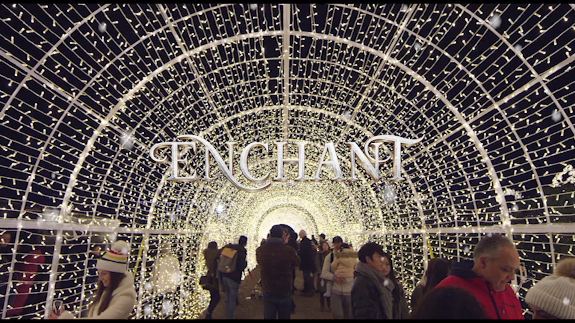 Enchant The World S Largest Christmas Light Maze Market Best Friend Bucket List Christmas Lights Travel Dreams