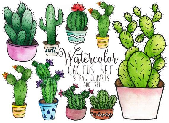 Cactus Clipart Watercolor Cacti Clip Art Succulent Clipart Cactus