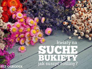 Kwiaty Na Suche Bukiety Jak Suszyc Rosliny Flower Aesthetic Flowers Floral Wreath
